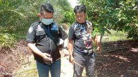 Tim Gabungan Polres Bartim Berhasil Meringkus Gopeng di Kutim